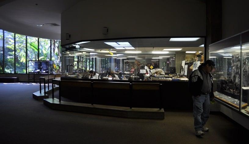 George C.Page Museum em Los Angeles