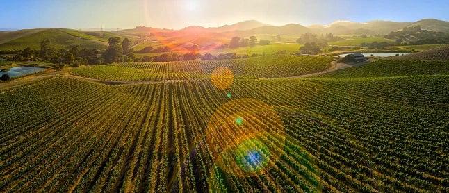 Vinícolas em Napa Valley