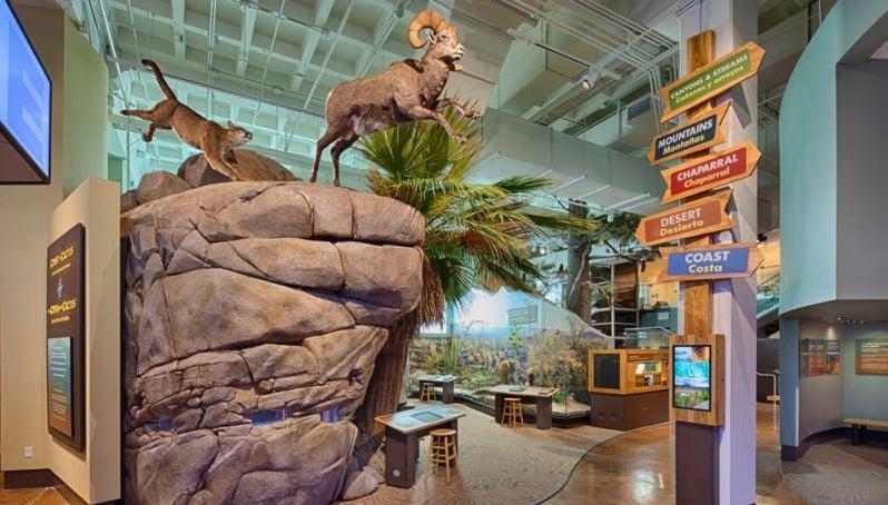 Museu de História Natural em San Diego