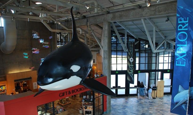 Como chegar no Monterey Bay Aquarium em Monterey