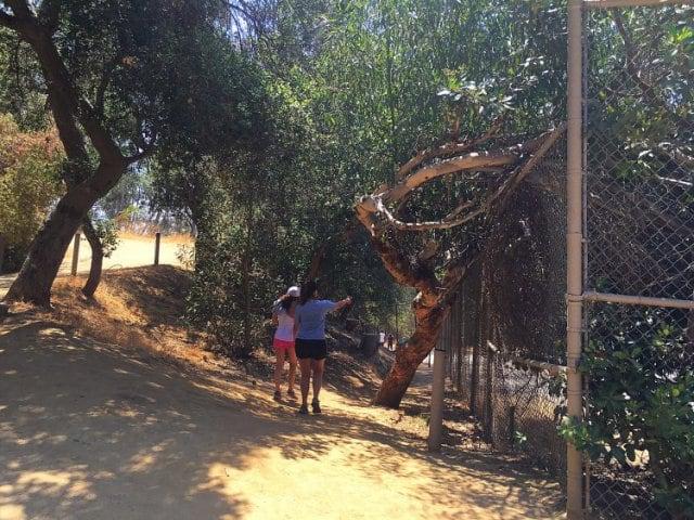 Zoológico de Los Angeles na Califórnia