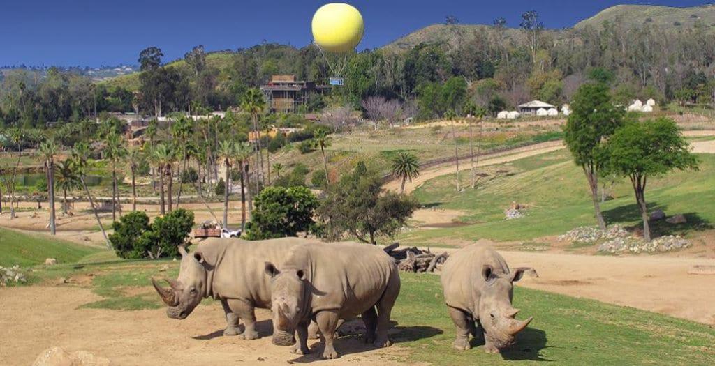 San Diego Zoo ou San Diego Zoo Safari Park