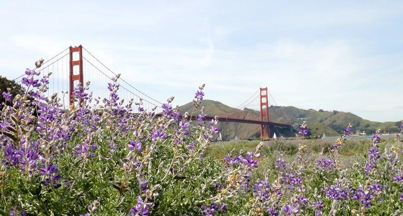 San Francisco em março