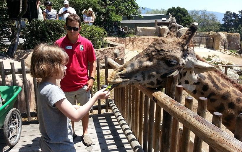 Visita ao zoológico Santa Bárbara Zoo