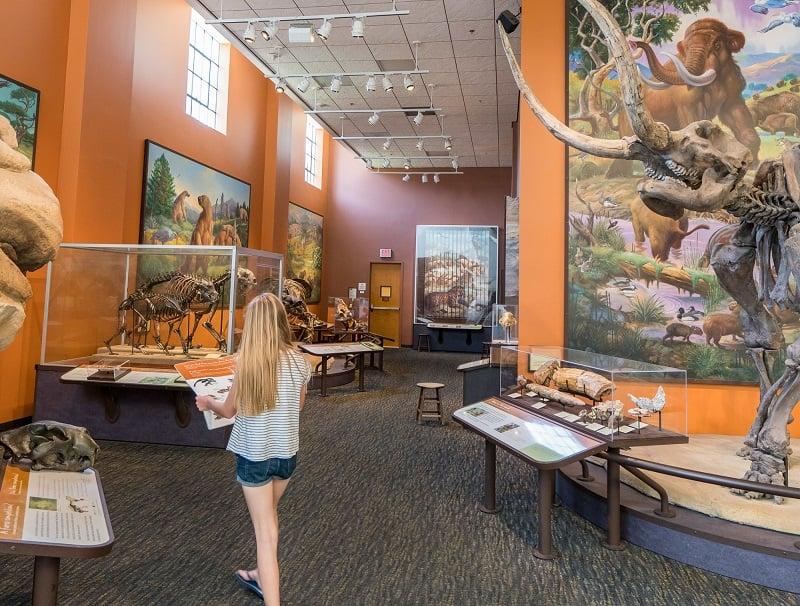Diversão nos demais museus de San Diego