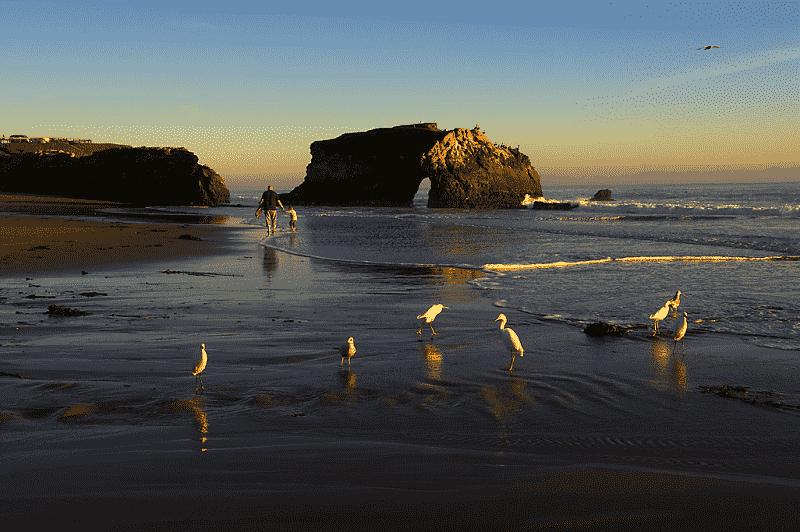 Praia Natural Bridges State Beach em Santa Cruz