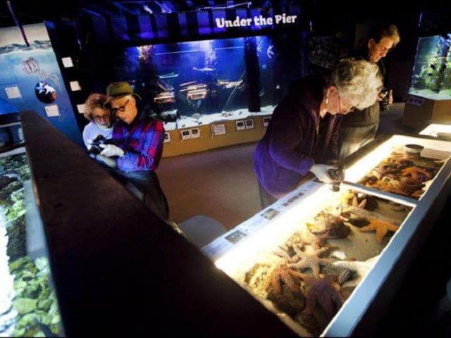 Museus em Santa Mônica