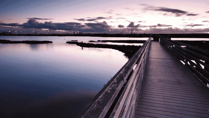Ponto turístico Reserva Ecológica Bolsa Chica em Huntington Beach
