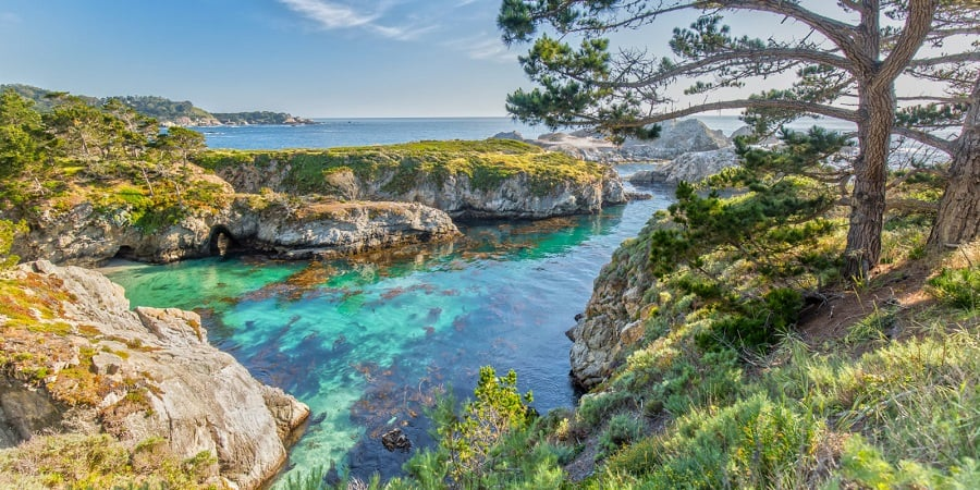 Tour por Point Lobos State Natural Reserve em Carmel-by-the-Sea