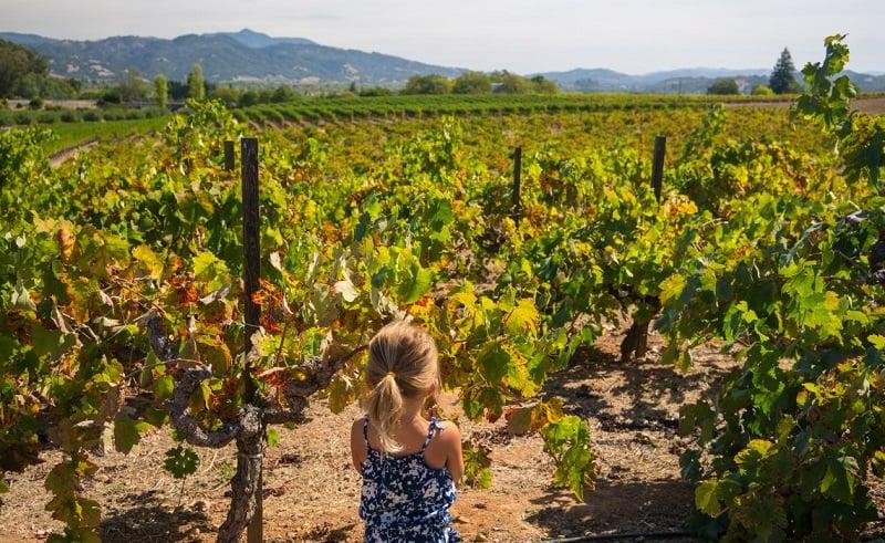 Ir nas vinícolas com criança em Napa Valley