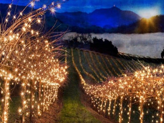 Onde ficar em Napa Valley: Melhores regiões
