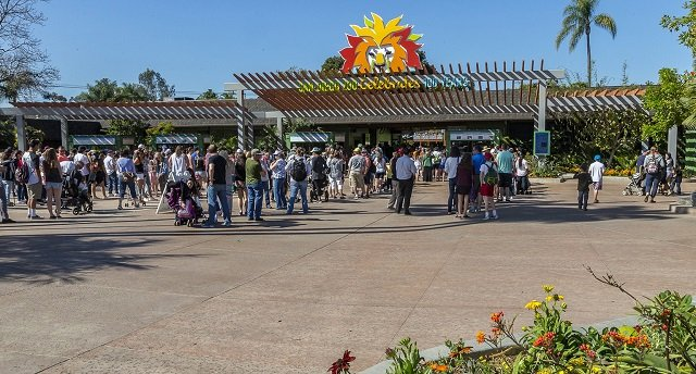 Onde comprar ingressos para o San Diego Zoo